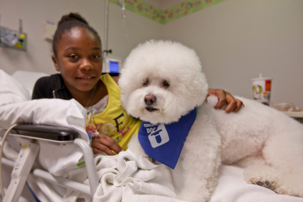 Doggie Brigade canine with patient