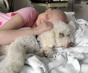 The healing power of the Doggie Brigade