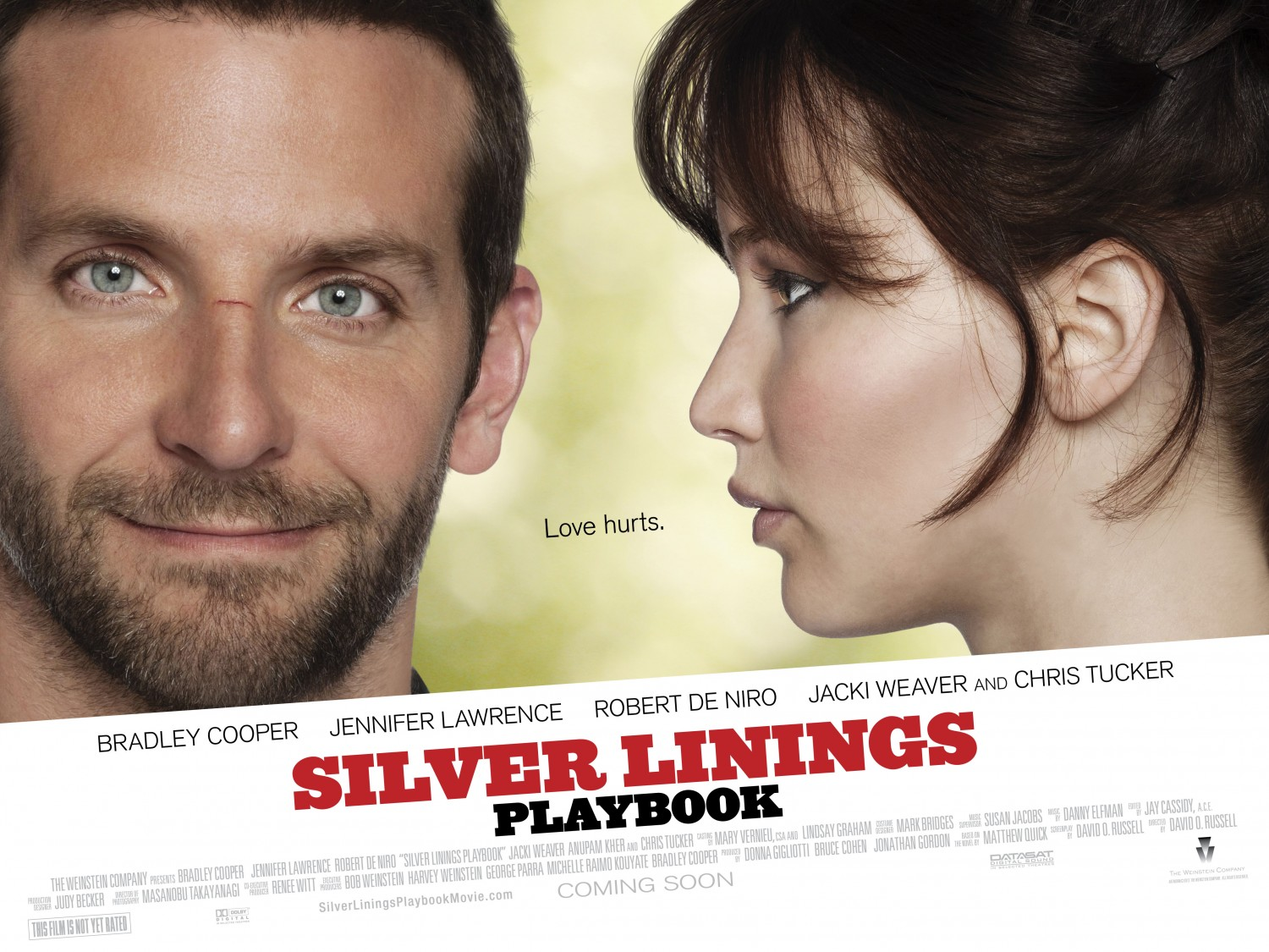 Psychiatrist sees 'silver lining' in movie's portrayal of ...  Silver
