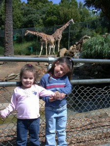 A zoo trip is a good learning opportunity. Photo by Lance Nishihira /CC Flickr.