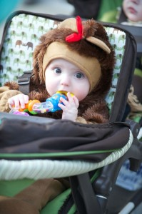 7th annual Walk for Babies set for Sept. 22