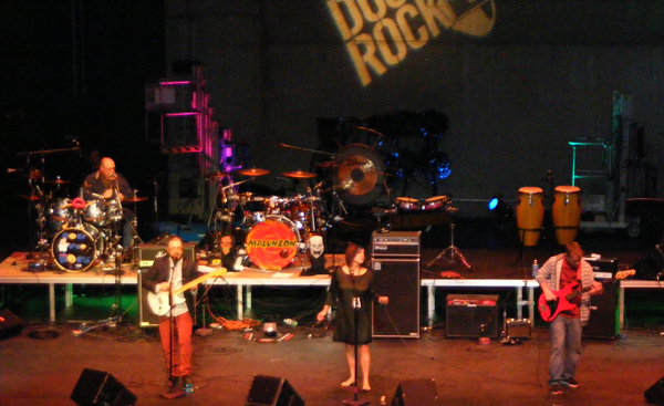 The Chrome Brothers have been performing for Docs Who Rock since 2010. They play a mix of new and old rock n' roll.