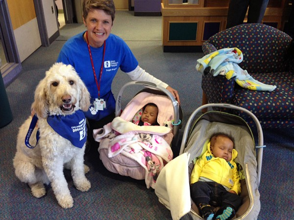 Diane Bratt and her dog Sophie hang out with the Thomas twins, of Youngstown.