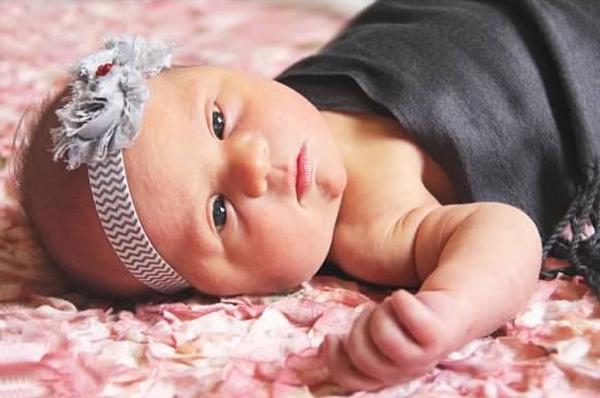 Newborn pictures-roses