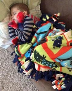 lizard-blanket