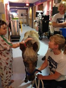 Petie the Pony