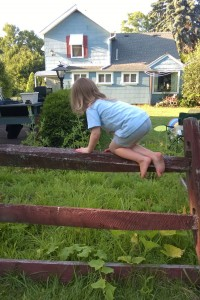 climbing-the-fence