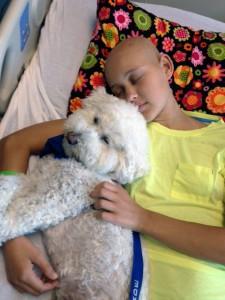 Puppy love, Sammy style