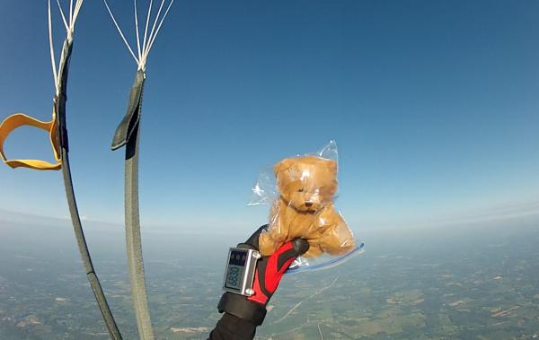 Air Bear Under Canopy