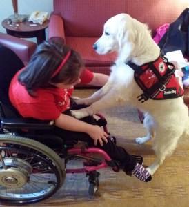 Kheira's service dog senses seizures before they happen