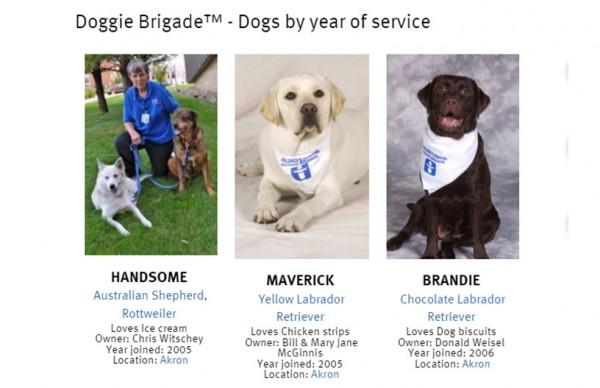 doggie-brigade-directory
