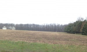 Land for new house