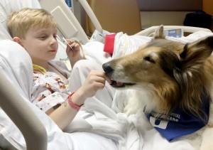 Doggie Brigade's sweet Jasmine highlight of Max's stay