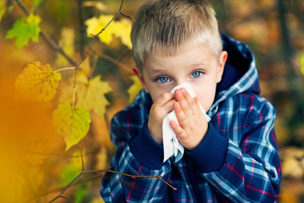 4 tips for surviving fall allergies