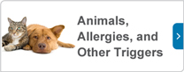 Animals, Allergies, and Other Triggers