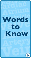 Words to Know Glossary