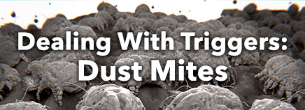 Dealing With Triggers: Dust Mites