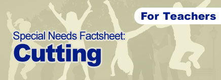 Cutting Special Needs Factsheet