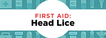 First Aid: Head Lice