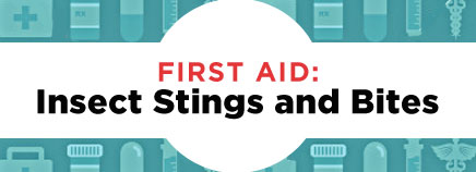 First Aid: Insect Stings and Bites