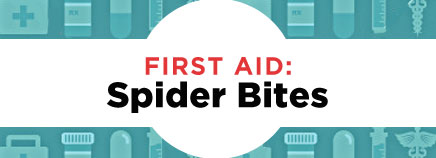 First Aid: Spider Bites