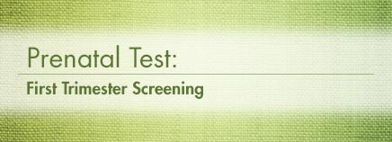 Prenatal Test: First Trimester Screening