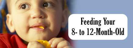 Feeding Your 8- to 12-Month-Old
