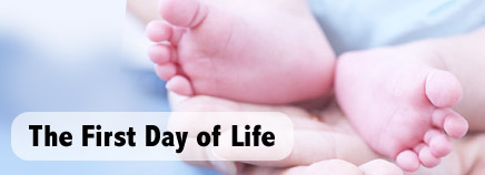 The First Day of Life