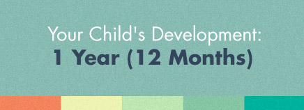 Your Child's Development: 1 Year (12 Months)