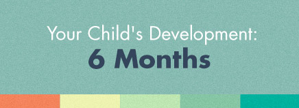 Your Child's Development: 6 Months