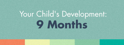Your Child's Development: 9 Months