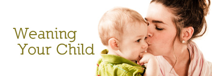 Weaning Your Child