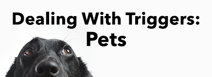 Dealing With Triggers: Pets