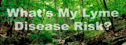 What's My Lyme Disease Risk?