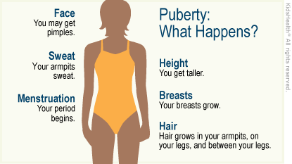 Illustration: Changes during puberty for girls